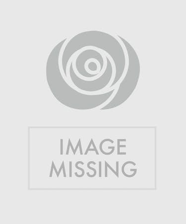 Forever Flowers Rose Hill Florist Nashville Tn
