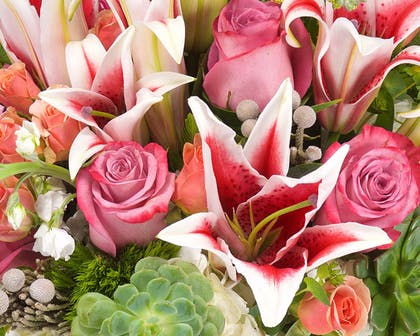 Red and white stargazers coexist with pink roses in a floral arrangement